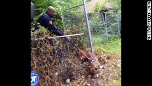 Malachi Jackson with the Detroit Animal Control catching a stray pit bull from abandoned home.