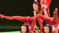 Mongolian masters of contortion
