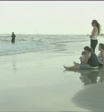 Sharks attack 2 men on Fla. beach - CNN.com Video