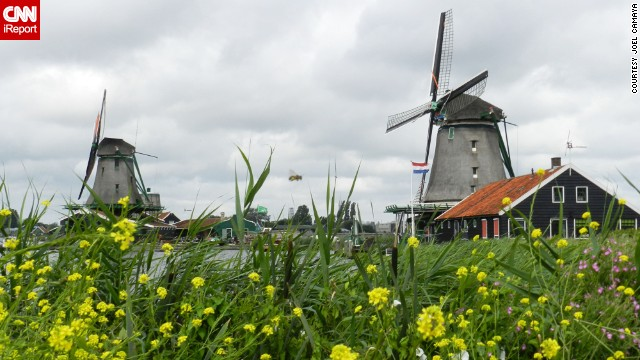 Quintessentially Dutch windmills like these, just north of Amsterdam, have inspired a host of famous artists from Rembrandt to Van Gogh.