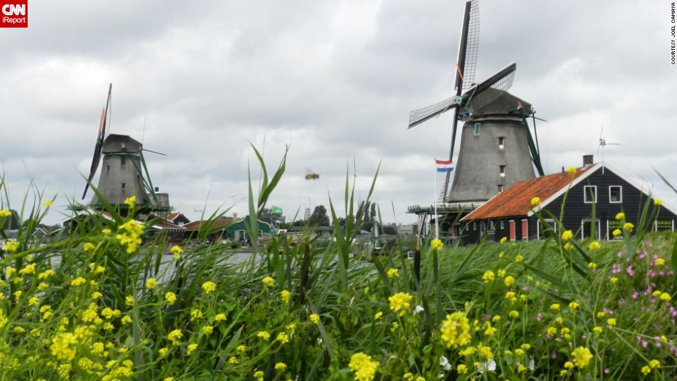 Zaandam, Países Bajos