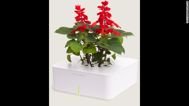 <a href='http://www.clickandgrow.com/' target='_blank'>Click and Grow</a> lets you grow herbs and flowers indoors using a smart soil and watering technology.
