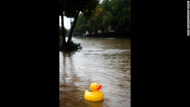 A rubber ducky floats down Ninth Street alongside North Boulder Park in Boulder, on Thursday, September 12.