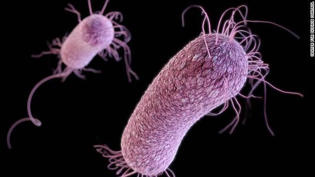 Multi drug-resistant Pseudomonas aeruginosa