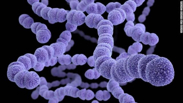 Drug-resistant Streptococcus pneumoniae