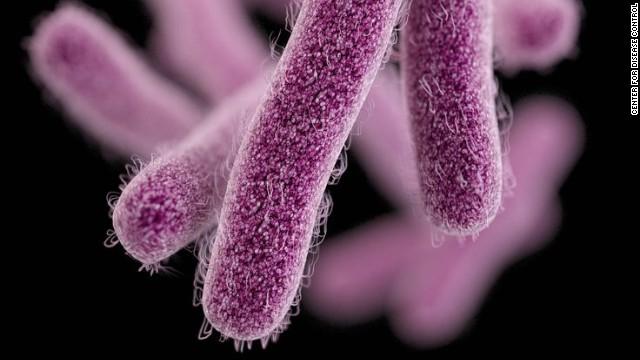 Drug-resistant shigella