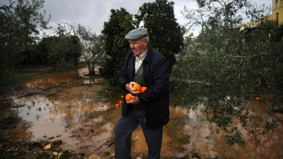 "A man recovers oranges from the tree on Bollullos de la Mitacion south of Spain, on January 4, 2010. The national weather office has placed all of Andalucia on a ""yellow"" alert. AFP PHOTO / CRISTINA QUICLER (Photo credit should read CRISTINA QUICLER/AFP/Getty Images)"