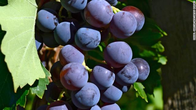 Wallet-friendly Australian wines that aren't Shiraz