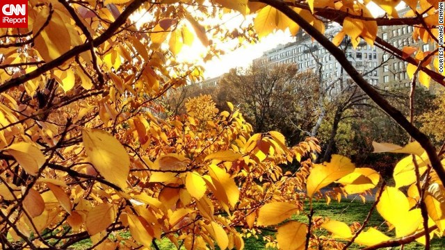 "Is there anything like <a href='http://ireport.cnn.com/docs/DOC-883214'>autumn in New York</a>? In Central Park, ""the sun lit all the fall leaves on fire with its late-afternoon brilliance,"" said Thomas Denman."