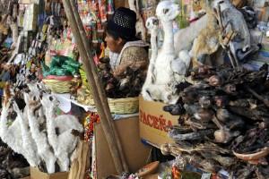 El Mercado de las Brujas, Bolivia