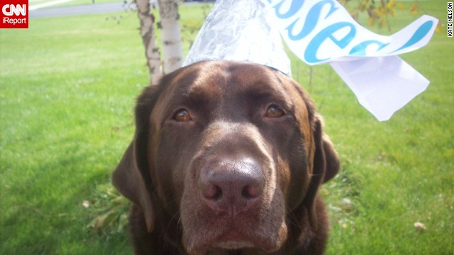 A Hershey's Kiss was the <a href='http://ireport.cnn.com/docs/DOC-344142'>obvious costume choice</a> for Bailey, iReporter Kate Nelson's sweet chocolate Lab.