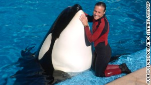 'Blackfish': Chilling film on captive orcas