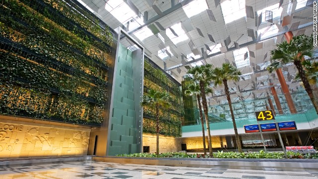 Changi Airport's green wall, in terminal three, is the world's largest vertical garden, measuring 300 meters (984 feet) by 14 meters (45 feet). It contains more than 10,000 plants. There are four water features and plants are secured to metal cables attached to an enormous framework, which allows their position to be altered.