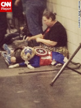 And this<a href='http://instagram.com/p/fXwPJTQot1/' target='_blank'> canine Captain America</a> is taking a little break.