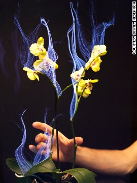 What will the future of touch look like? With haptic technology, which could be described as the science of touch, users have a physical experience, making the technology more interactive. This will revolutionize the gaming experience but also be useful in medicine and every-day life. How about plants that can interpret how you touch them?