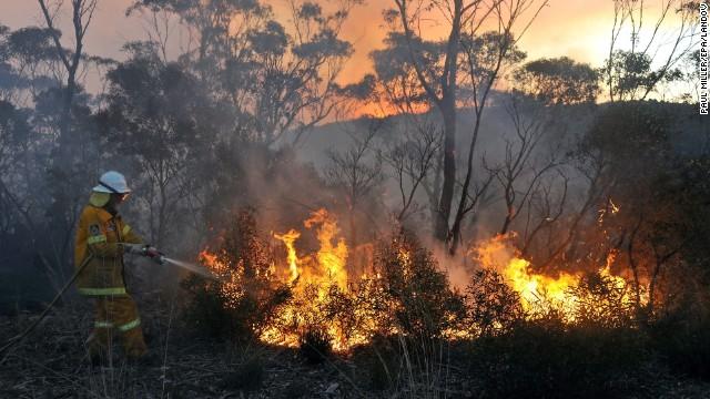 Más de 50 incendios forestales encienden las alertas en Australia