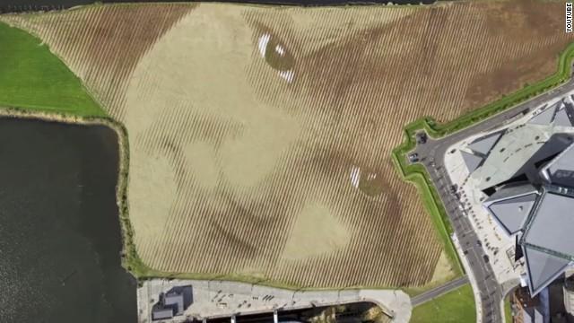 Un retrato gigantesco creado sobre la tierra que se disfruta desde el cielo
