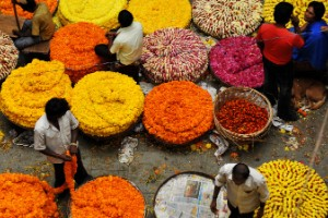 Pongal, India