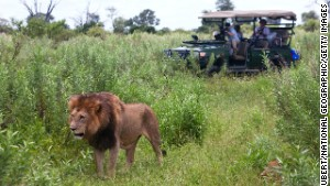 African safaris showcase the best reasons to travel with a group -- companionship, safety, access to restricted areas and incredible experiences.