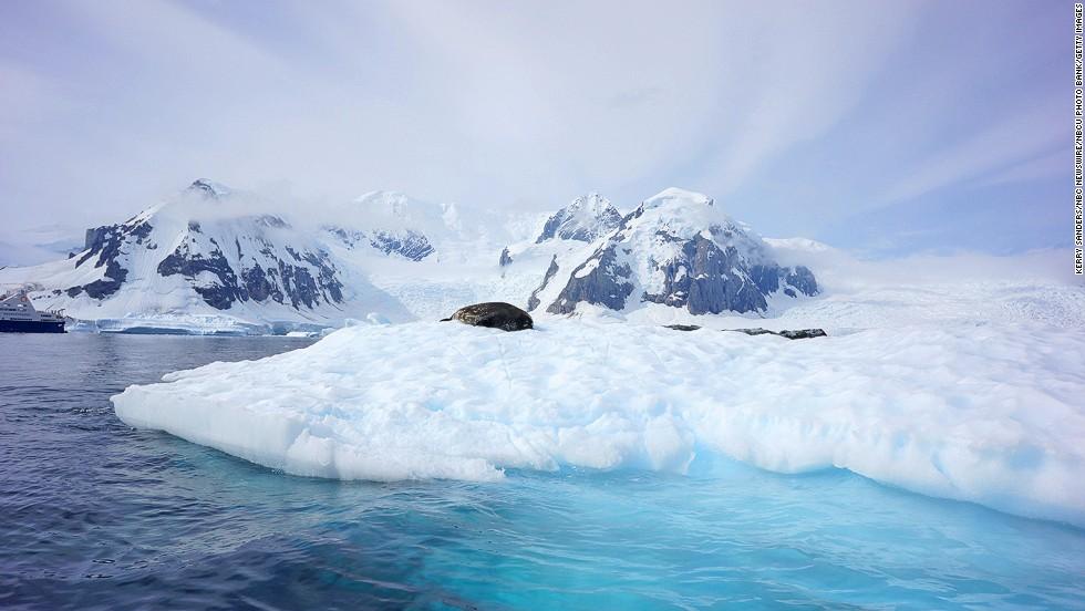 Mejores 10 países para visitar en 2014: la Antártida (2)