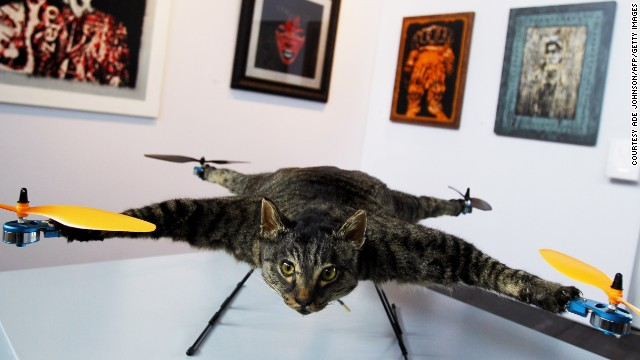 Drone+stuffed cat = art. Orville is a flying helicopter cat made by Dutch artist Bert Jansen. The remote-controlled quadcopter was first exhibited in Amsterdam and Jansen has since created more taxidermy drones.