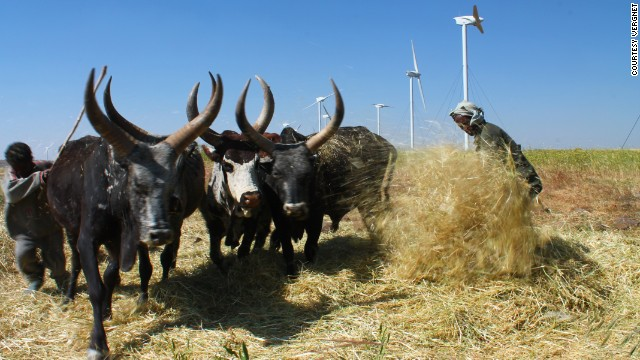 Just 23% of Ethiopia's 90 million people have access to electricity. The wind farm is expected to generate power throughout the year, except during the rainy season between June and September.