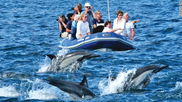 Over at Big Island adventurous vacationers can get aboard the Safari Explorer with just 36 others and, in between kayaking and dolphin spotting, engage in a mesmerizing ballet with manta rays.