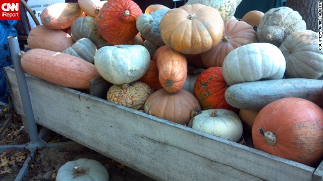 "Pumpkins and gourds await sale at an Amish market in southern Maryland. ""Fall just would not be fall without a weekly visit to the Amish market,"" says Janie Lambert, who lives nearby. See more photos on CNN iReport."