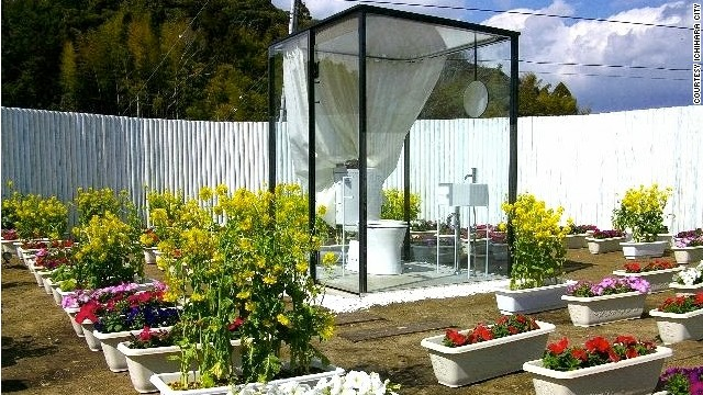 "The public toilet in Ichihara, Japan, was built by architect Sou Fujimoto to claim the title of the ""world's largest toilet."" On 200 square meters of open garden, this toilet sits inside a glass box and is surrounded by a two-meter fence to shelter it from prying eyes. The city commissioned it with the hope of attracting tourists. Read more: Flush Japanese City builds world's biggest toilet"