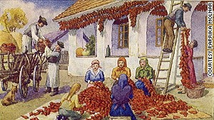 Old and childless women picked the fiery crop.