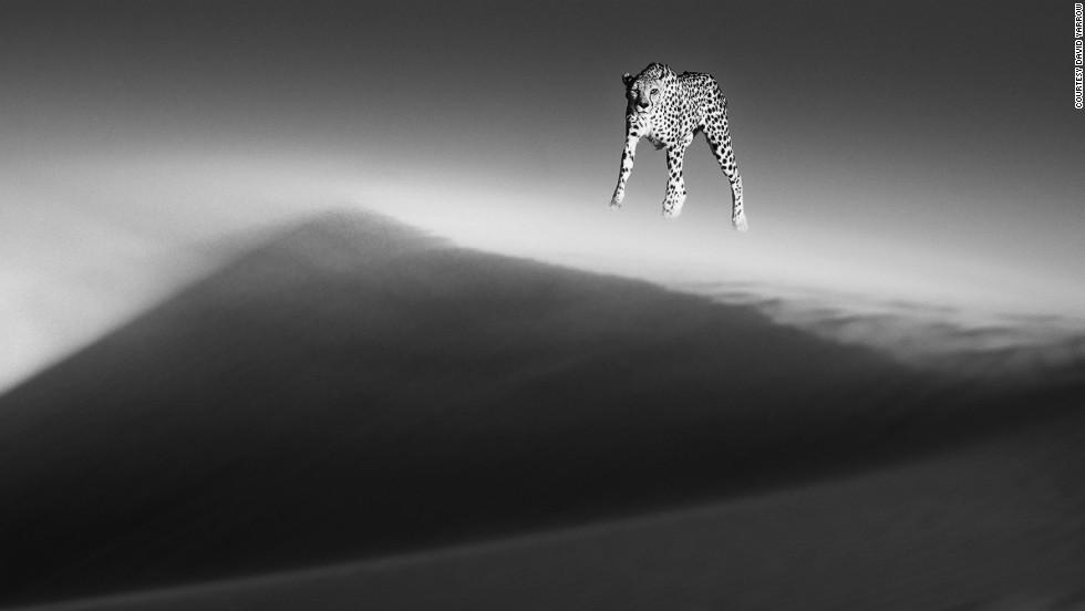 """Duna Etérea"" - Desierto de Namib, Namibia"