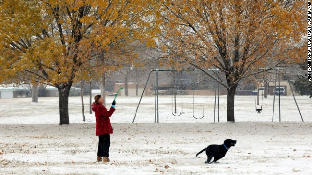 Valerie Thompson tosses a ball for her dog, Gus, on November 24 at Stardust Skies Park in Albuquerque, New Mexico.