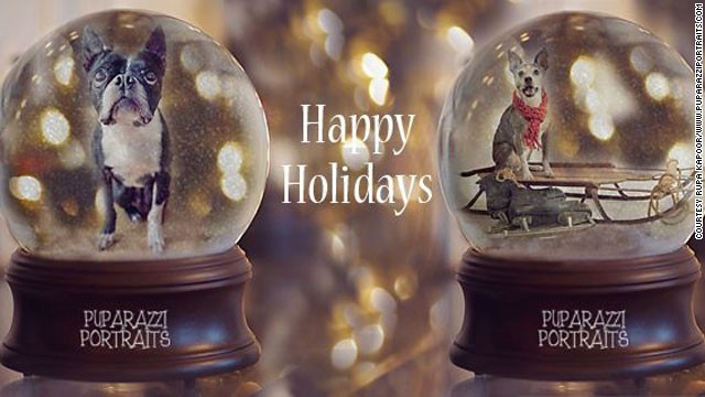 Kapoor created digital images of people's pets in snow globes last year in order to raise money for the Alabama Boston Terrier Rescue group. Via her <a href='https://www.facebook.com/PuparazziPortraits' target='_blank'>Facebook page</a>, she raised more than $300 for the organization last year. She will be creating the snow globe images again this year.
