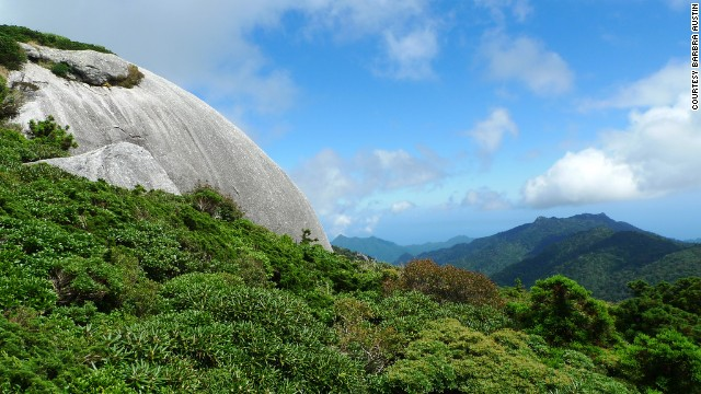 A walk along the Yodagawa trail takes you to some of the island's peaks.