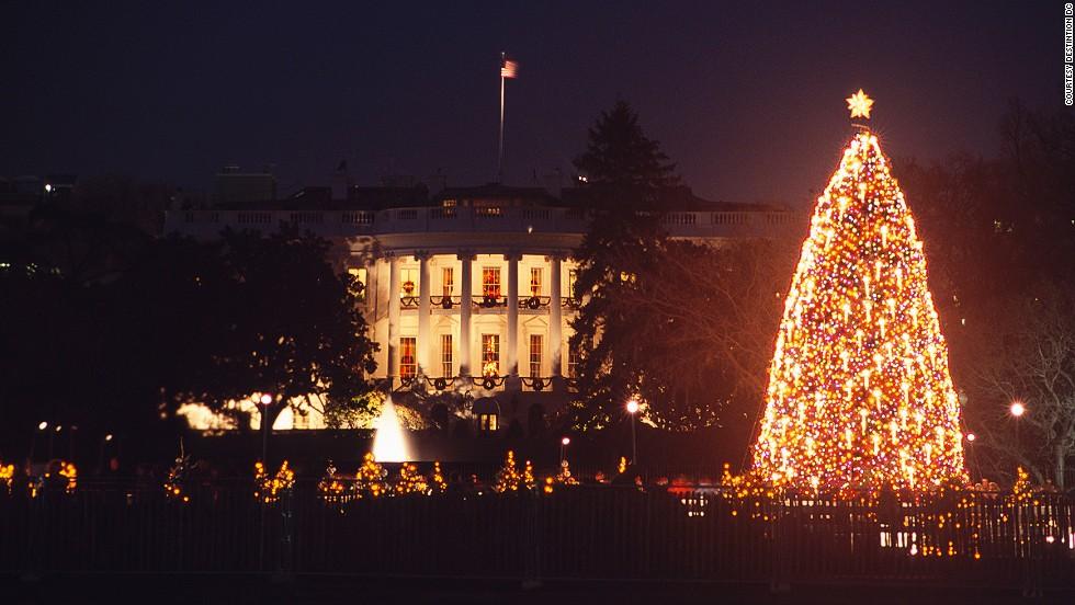 Los 12 árboles de Navidad más espectaculares del mundo | CNN
