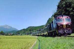Japón: festivales completamente nuevos