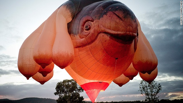 "The Skywhale, a curiously designed 34-meter-long hot air balloon, was commissioned by Canberra as part of its 2013 centenary celebrations. One observer called it ""a whale with a deformed scrotum."""