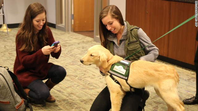 At the end of their dog sessions, Emory students often took photos of their new furry friends to carry a piece of calm with them.