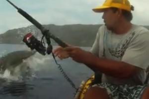 ¡Un tiburón intenta quitarle a un pescador lo que atrapó!