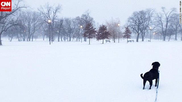 Winter weather brought on a whiteout on January 2 in Chicago's Humboldt Park neighborhood, said<a href='http://ireport.cnn.com/docs/DOC-1072304'> Ivan Vega</a>. He went out for a walk in the 20-degree weather with his dog, Sergeant Thomas.