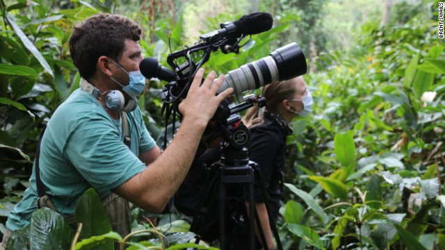 Arwa Damon and photographer Peter Rudden filming the critically endangered Western Lowland Gorilla.