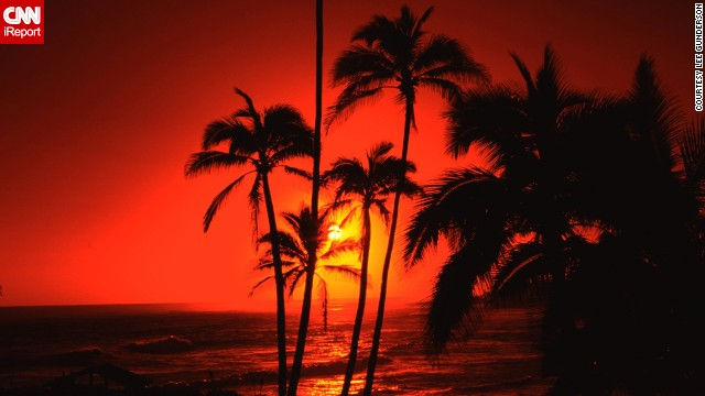 A vibrant sun disappears behind palm trees on Hawaii's island of Oahu.