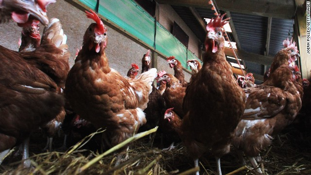 <strong>December 11, 2013:</strong> The FDA <a href='http://www.cnn.com/2013/12/11/health/fda-antibiotics-farms/'>announces</a> it wants to phase out the use of certain antibiotics in food-producing animals.