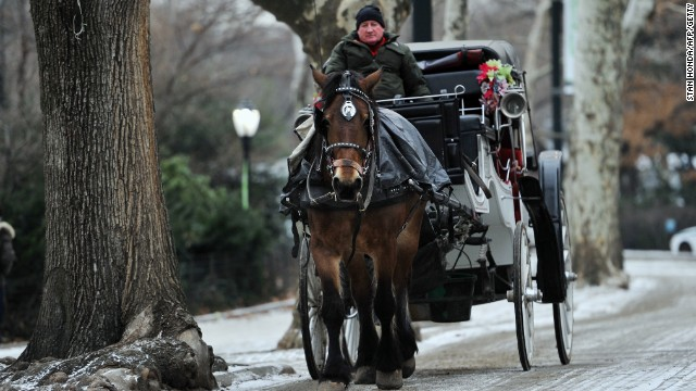 A horse pulls a carriage down a snow-dusted street in Central Park early in January. New York City Mayor Bill de Blasio thinks the horse-drawn carriages should be banned and replaced with antique-style electric cars.