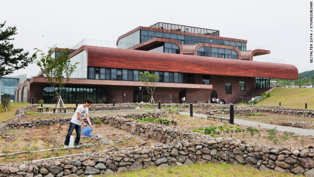 In 2012 Korean IT firm <a href='http://www.daum.net/' target='_blank'>Daum</a> relocated to an island off the coast of Korea. Its earth-toned office reflects the firm's stated commitment to building community through nature. The grounds include a communal garden and outdoor play space for the firm's day care center.