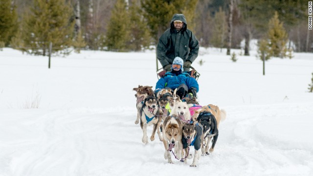 Cheer on the competitors at this qualifying race for the Alaskan Iditarod.