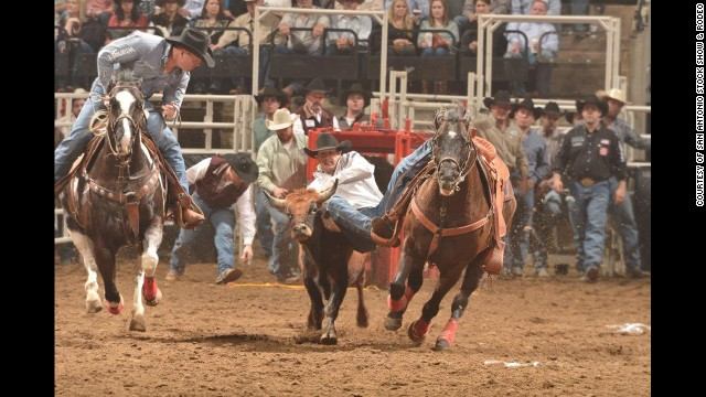 Over the cold winter? Head to San Antonio for the horse and livestock shows and rodeo performances.