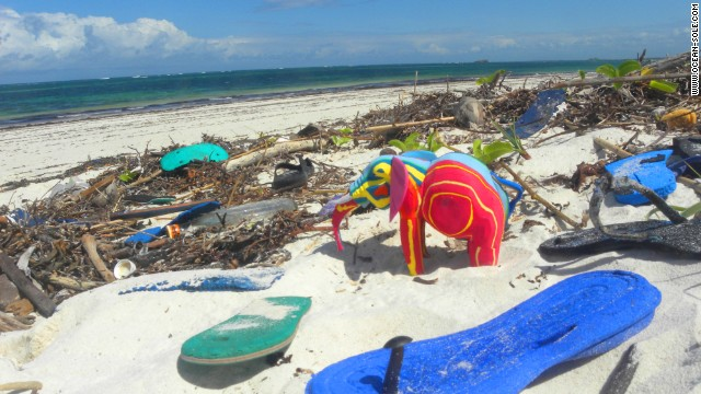 The flotsam and jetsam do not only spoil the natural beauty of the environment but are also a major hazard to the marine and terrestrial wildlife living there.