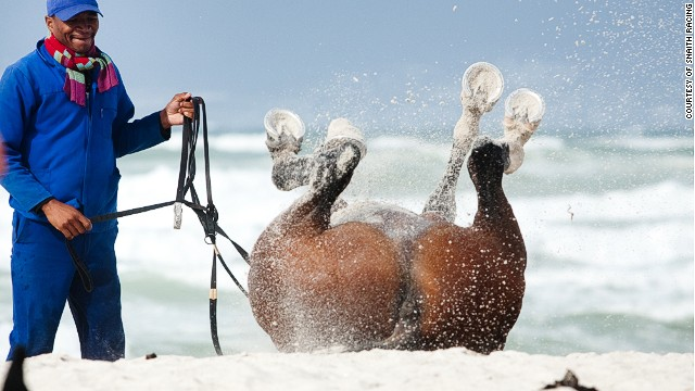 A trip to the beach helps the horses relax before a big race weekend.