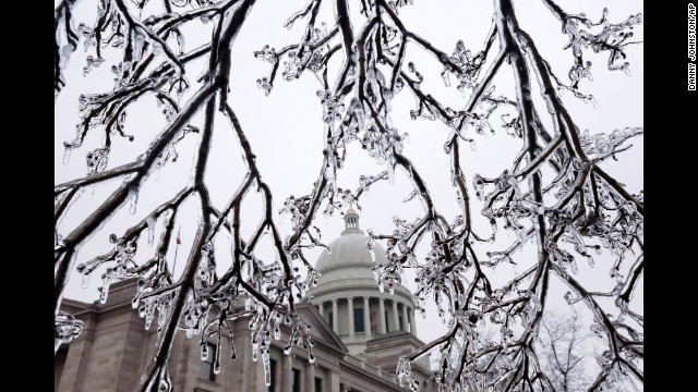Tree limbs hang heavy with ice in front of the Capitol building in Little Rock, Arkansas, on February 4.